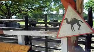 Provincia Santiago - Zoologico Hacienda Maria Claridad