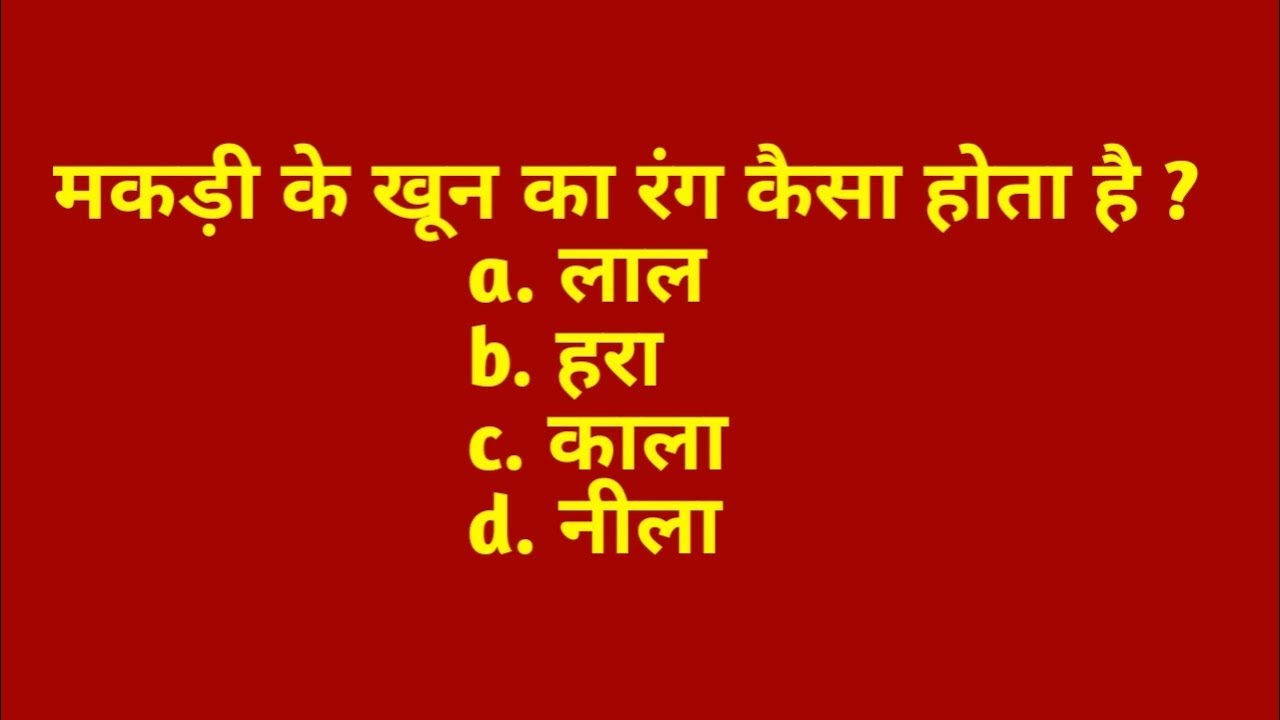 5 मजेदार GK पहेलियाँ | Interesting GK | New General Knowledge in Hindi by Rapid Mind