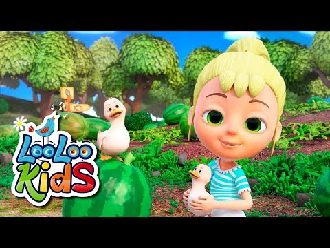 Down by the Bay - THE BEST Songs for Children | LooLoo Kids