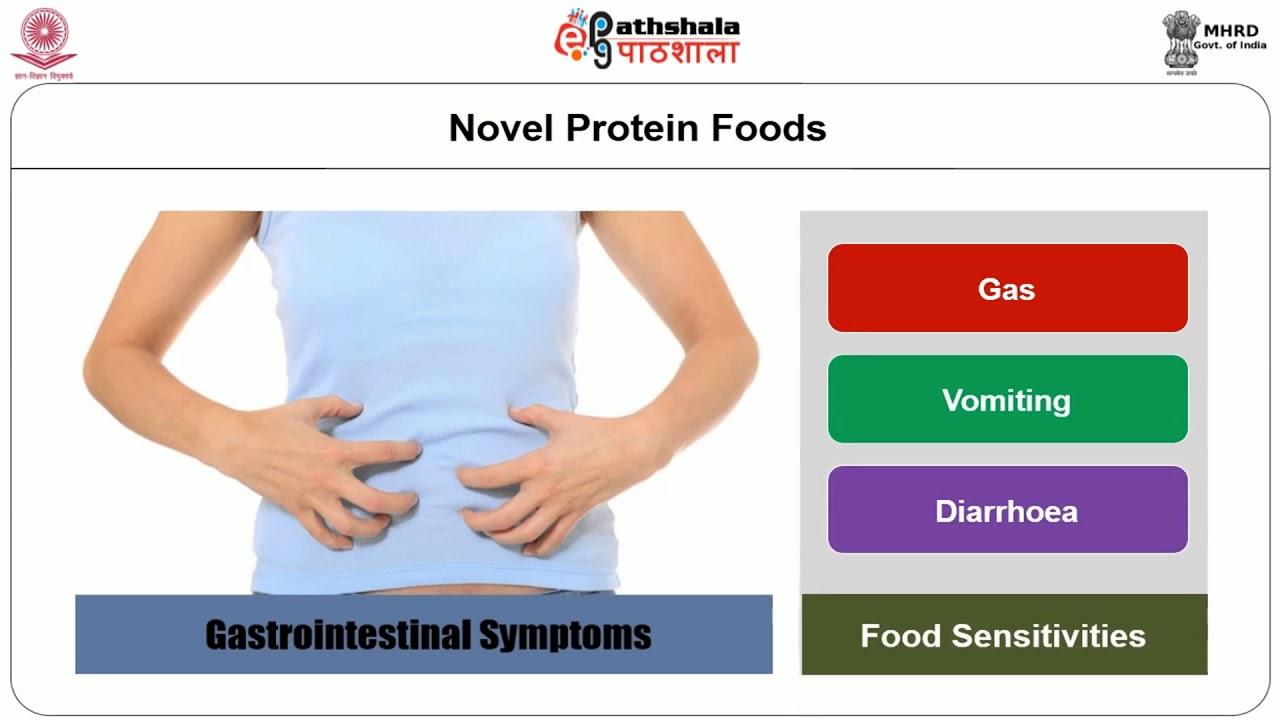 Novel protein foods