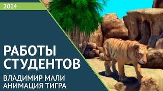 Анимация Тигра