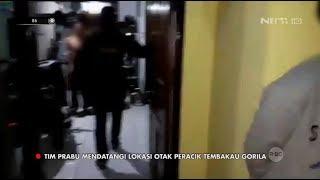 Tim Prabu Gerebek Rumah Otak Peracik Tembakau Gorila - 86