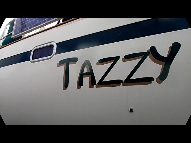 Tazzy 06/01/19