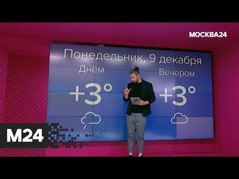 """""""Погода"""": какая погода ожидает москвичей в начале недели - Москва 24"""