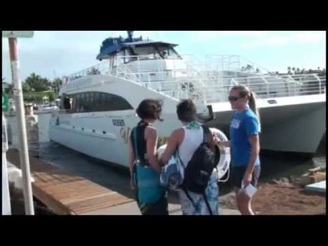 Molokini Snorkel Adventure ~ Whale Watching Tour