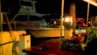 Hog Fish Grill Stock Island Key West Video Reviews Of Guaranteed Best Places To Eat Cheaply