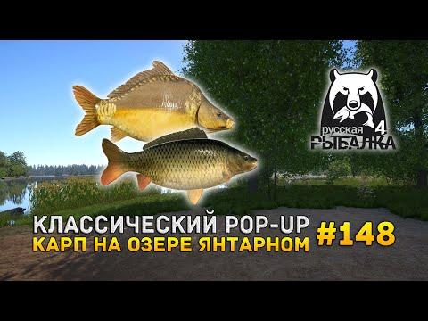 Классический POP-UP. Карп на озере Янтарном - Русская Рыбалка 4 #148