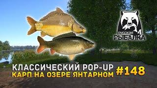 Классический POP UP Карп на озере Янтарном Русская Рыбалка 4 148