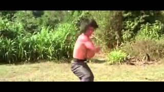 モンキー・フィスト/猿拳