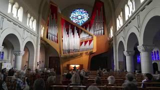 Stéphane Mottoul - Danse Symphonique libre Improvisée - Bruxelles chant d'oiseau orgue Kleuker
