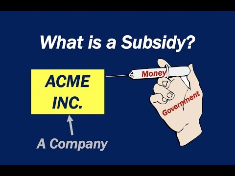 What is a Subsidy?