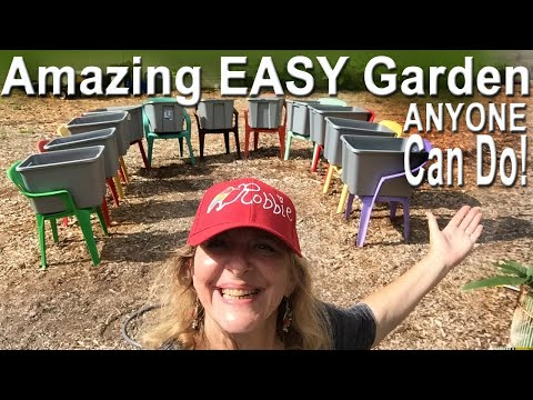 TOO EASY Vegetable RAISED BED Garden-Grow MORE FOOD in LESS Space CHEAP & FUN Container & Pot Plants