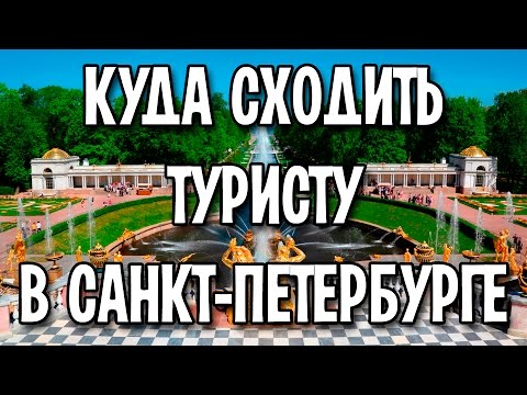 Куда сходить туристу в Санкт-Петербурге