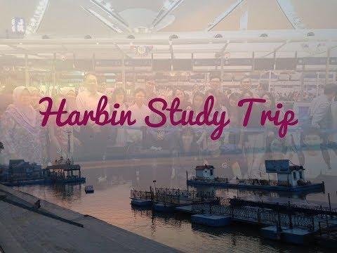 Harbin Study Trip   Vlog 20  