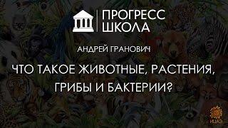 Андрей Гранович — Что такое животные, растения, грибы и бактерии?