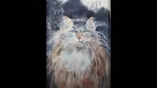 Коты Марины Дайковской