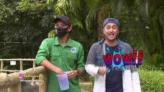 Download Wow! Fakta Unik Tentang Simpanse, Pipis Nggak Cebok! | Best Moment Safana (24/7/20)