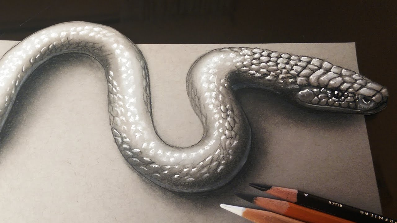 How to draw a realistic 3d snake 3d art kids and adults youtube