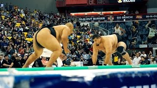 2016 US SUMO OPEN - Official Teaser