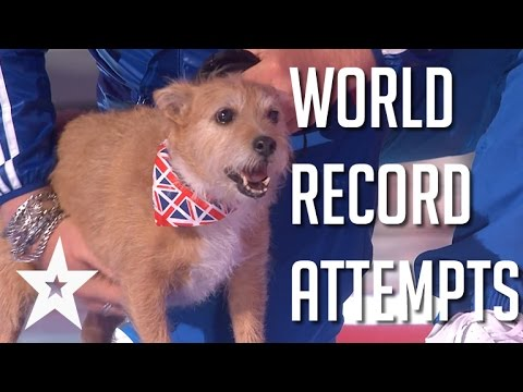 Craziest World Record Attempts | Got Talent Global
