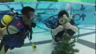 PADI SEAL and Bubblemaker Kids on SCUBA decorate Christmas Tree.