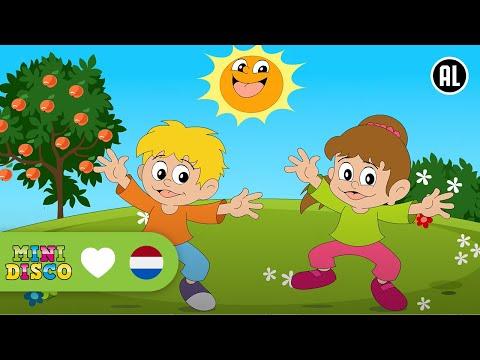 Nederlandse Kinderliedjes | NON-STOP  |15 LIEDJES - 38 MINUTEN | Minidisco