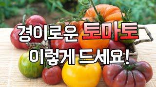 건강하게 나이들고 싶다면 경이로운 토마토를 드세요 - …