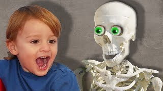 Skeleton Dance and more Nursery Rhymes & Kids Songs by LETSGOMARTIN