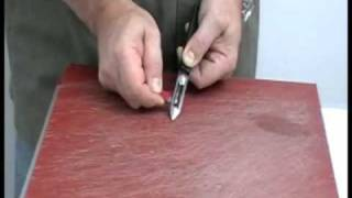 how to sharp a patato peeler with Easysharp Xtra.flv