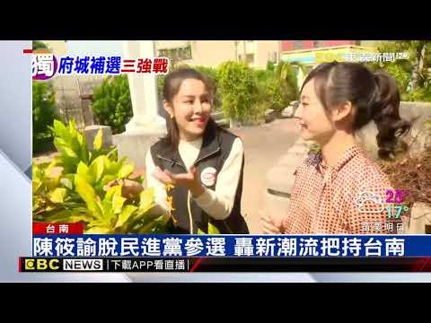 台南立委補選「三腳督」 藍猛攻、綠分裂