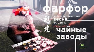 Фуцзянь LIVE. Делаем чай, пакуем фарфор. Чайные заводы, дегустация.