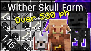 Wither Skeleton Skull Farms with Portals (Tutorial) | Minecraft Java 1.16 (The Nether Update)