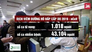 Toàn cảnh dịch viêm đường hô hấp cấp do nCoV ngày 11/2/2020  | VTV24