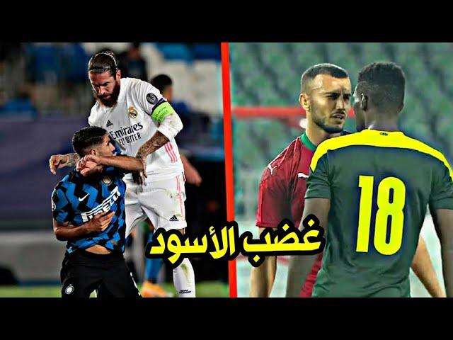 عندما تغضب الأسود المغربية هكذا تكون النتيجة ( الجزء الخامس )