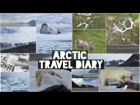 Arctic Travel Diary 2016 | LucieHi |