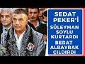 SOYLU SEDAT PEKER'İ KURTARDI ALBAYRAK ÇILDIRDI