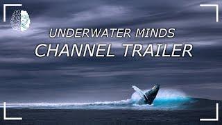 Underwater Minds channel trailer