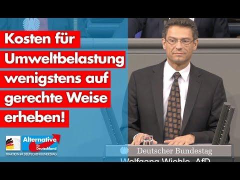 Kosten für Umweltbelastung wenigstens auf gerechte Weise erheben! - Wolfgang Wiehle - AfD-Fraktion
