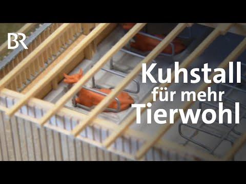 Fr Tierwohl und Umwelt: Ein Kuhstall aus Holz | Unser Land | BR Fernsehen