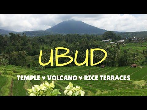 TRIP TO UBUD BALI - VOLCANO🌋, TEMPLES 🙏, RICE TERRACES 🌱- VLOG