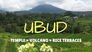 TRIP TO UBUD BALI - VOLCANO🌋, TEMPLES 🙏, RICE TERRACES 🌱- VLOG