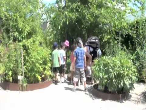 Welcome to the Toronto Botanical Garden