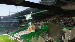 SV Werder Bremen vs FC Bayern München - 24.04.2019 - DFB-Pokal Halbfinale - Ostkurve