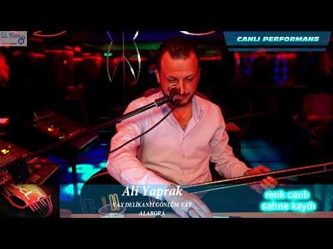 Ali Yaprak & VAY DELİKANLI GÖNLÜM VAY & ALABORA 2018 scl müzik sahne kaydı