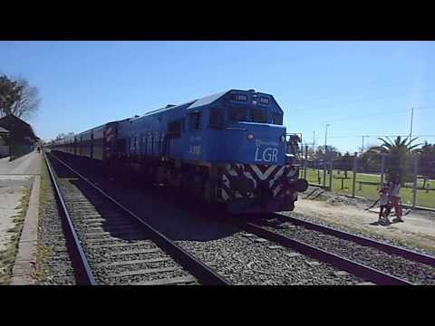 Tren Local de Nuevos Ferrocarriles Argentinos Linea General Roca En Plátanos.
