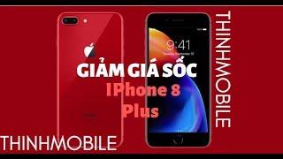 Đổ Xô Mua  Phone 8 Plus Giảm Gia Sốc Tại Thinhmobile