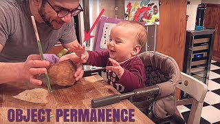 Object Permanence in babies... FUNNY AND INFORMATIVE!!!