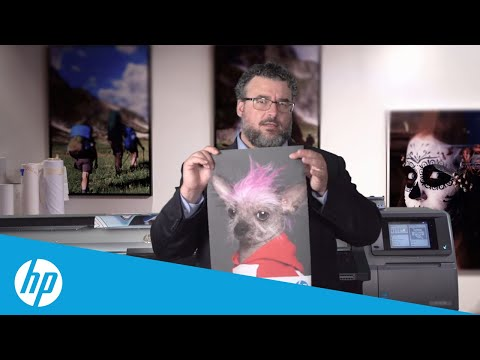 Printing on Fabric: Coated and Uncoated | HP Latex | HP