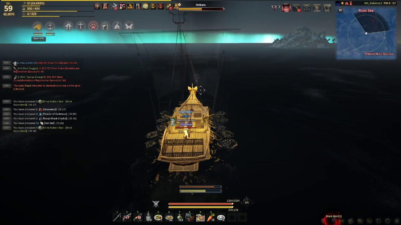 BDO Quick Guide - Solo Sea Hunt for Guild Bonus Funds and Epheria Black  Sails [Part 1]