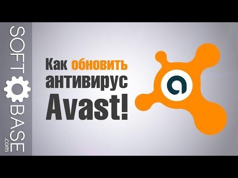 Как обновить антивирус Avast!